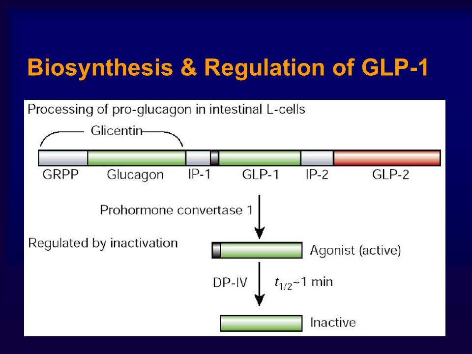 Biosynthesis & Regulation of GLP-1