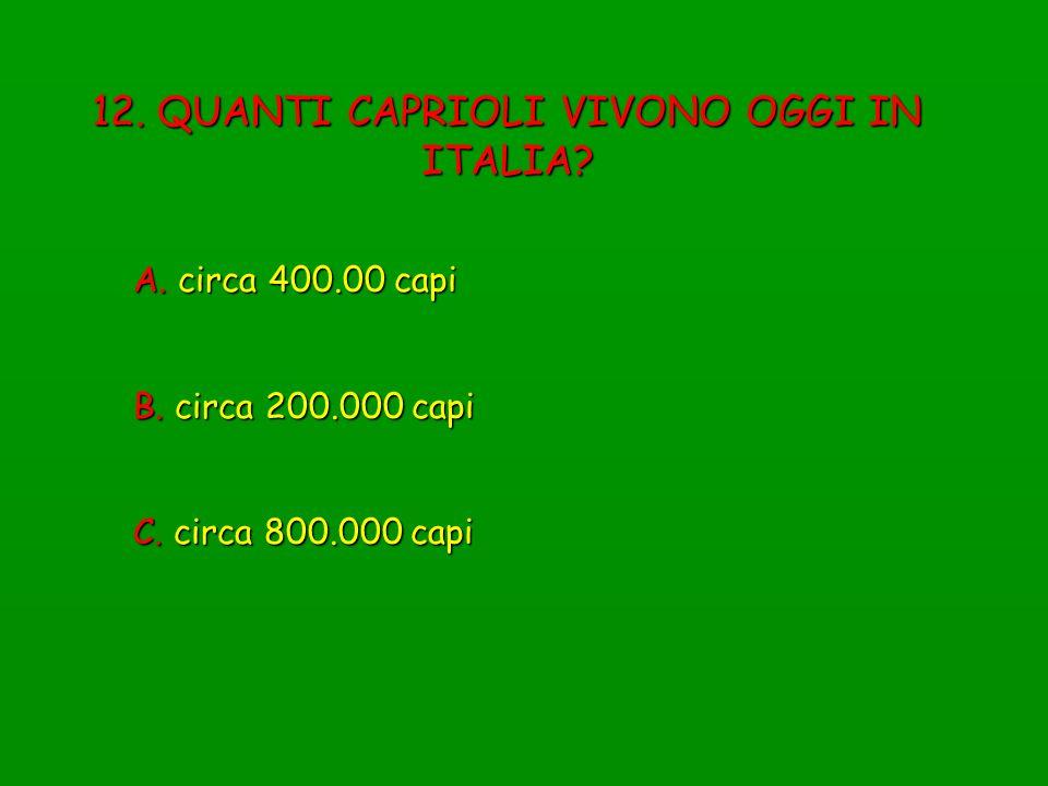 12. QUANTI CAPRIOLI VIVONO OGGI IN ITALIA