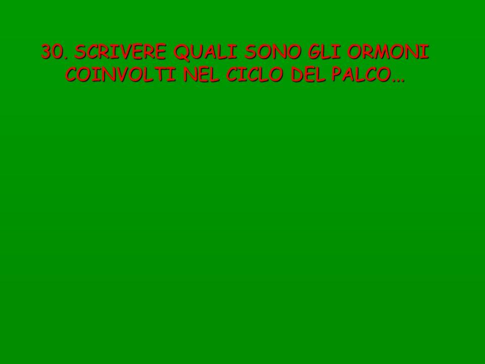 30. SCRIVERE QUALI SONO GLI ORMONI COINVOLTI NEL CICLO DEL PALCO...