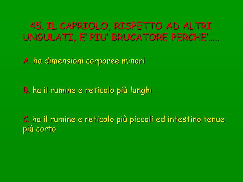 45. IL CAPRIOLO, RISPETTO AD ALTRI UNGULATI, E' PIU' BRUCATORE PERCHE'…..