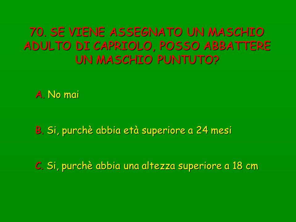 70. SE VIENE ASSEGNATO UN MASCHIO ADULTO DI CAPRIOLO, POSSO ABBATTERE UN MASCHIO PUNTUTO