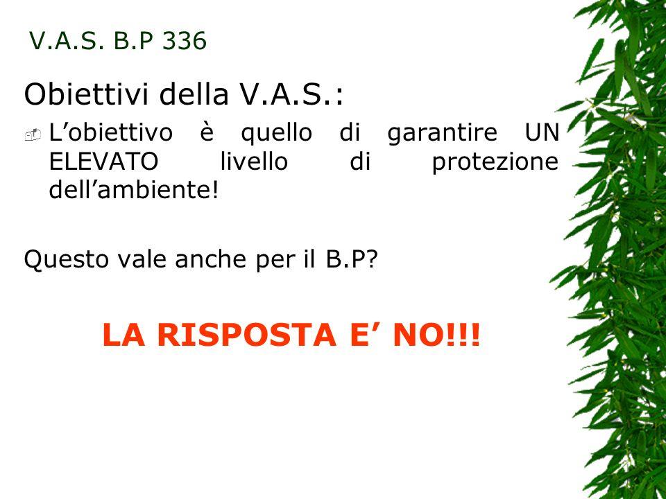 LA RISPOSTA E' NO!!! Obiettivi della V.A.S.: V.A.S. B.P 336