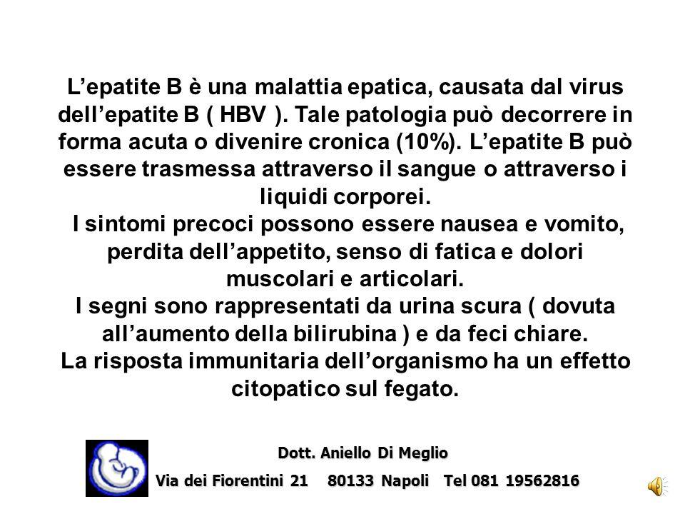 L'epatite B è una malattia epatica, causata dal virus dell'epatite B ( HBV ). Tale patologia può decorrere in forma acuta o divenire cronica (10%). L'epatite B può essere trasmessa attraverso il sangue o attraverso i liquidi corporei.