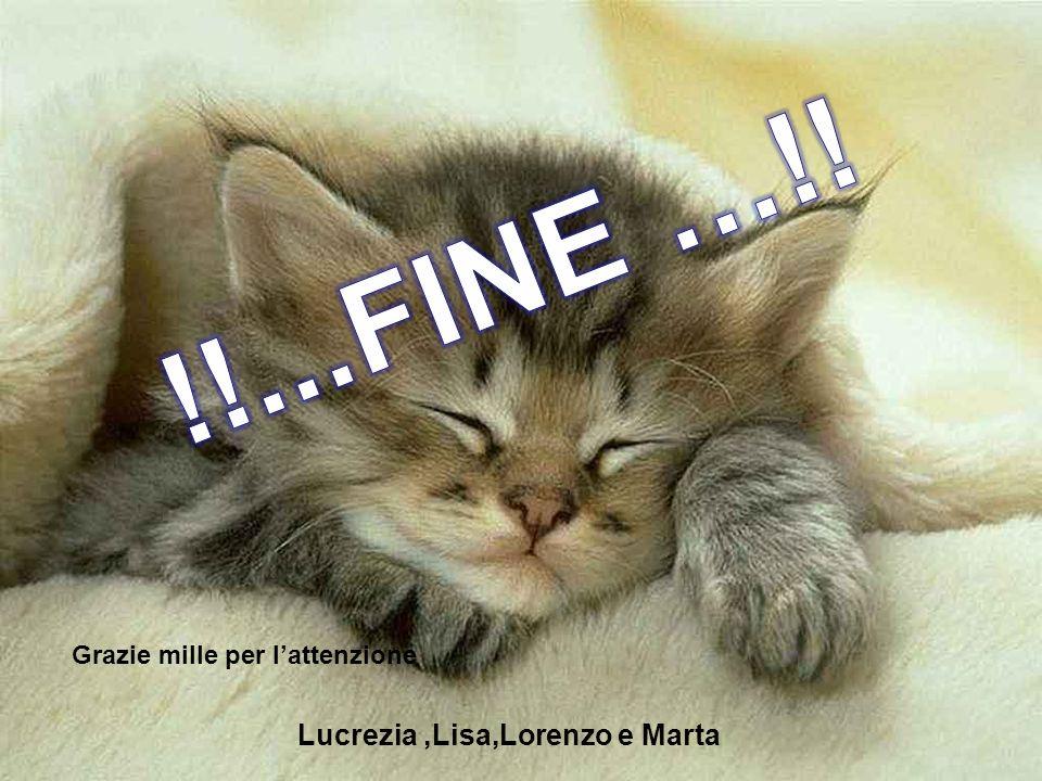 !!...FINE …!! Lucrezia ,Lisa,Lorenzo e Marta