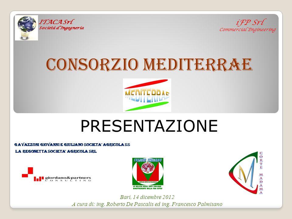 A cura di: ing. Roberto De Pascalis ed ing. Francesco Palmisano