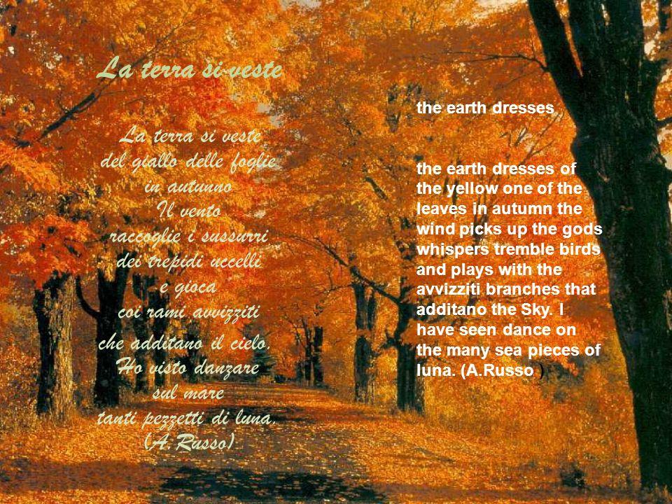La terra si veste La terra si veste del giallo delle foglie in autunno Il vento raccoglie i sussurri dei trepidi uccelli e gioca coi rami avvizziti.