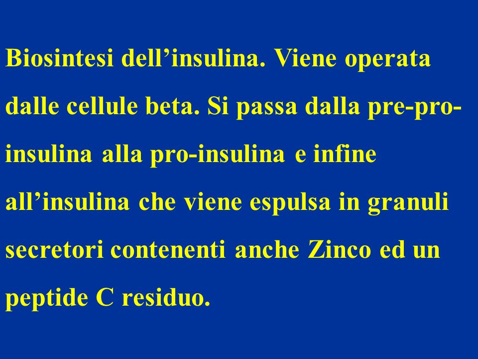 Biosintesi dell'insulina. Viene operata dalle cellule beta