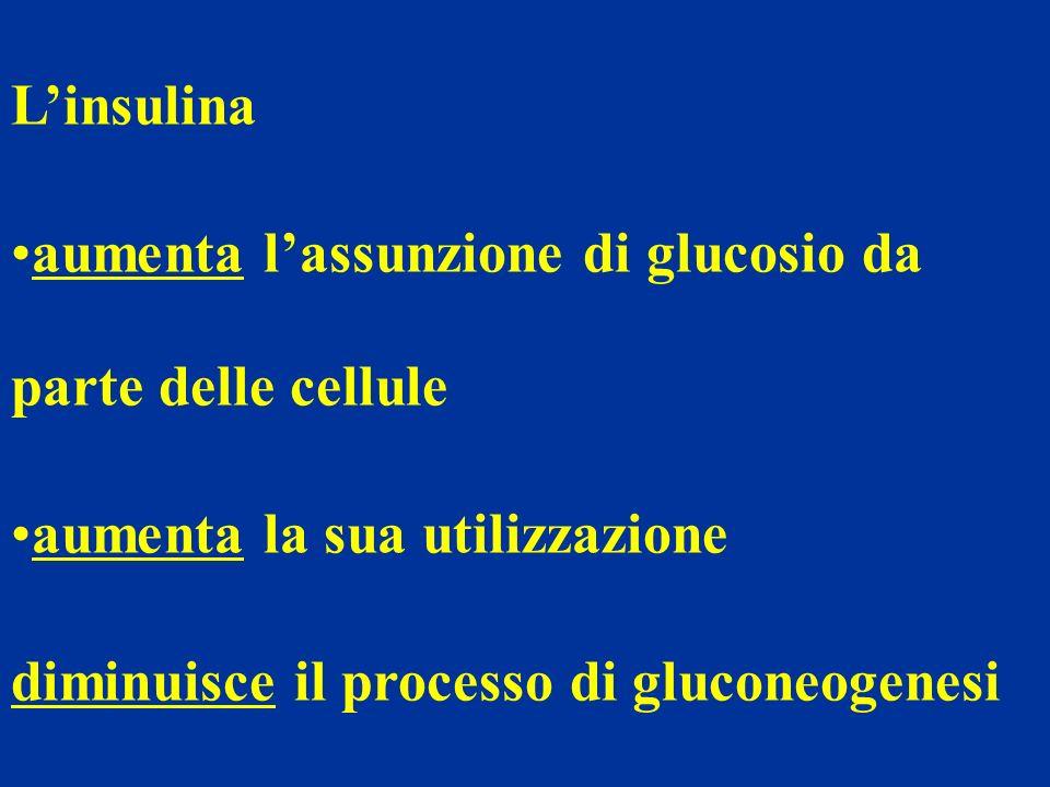 L'insulina aumenta l'assunzione di glucosio da parte delle cellule. aumenta la sua utilizzazione.