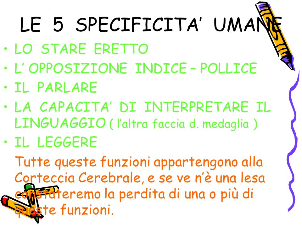 LE 5 SPECIFICITA' UMANE LO STARE ERETTO