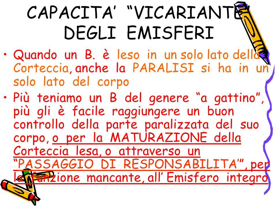 CAPACITA' VICARIANTE DEGLI EMISFERI
