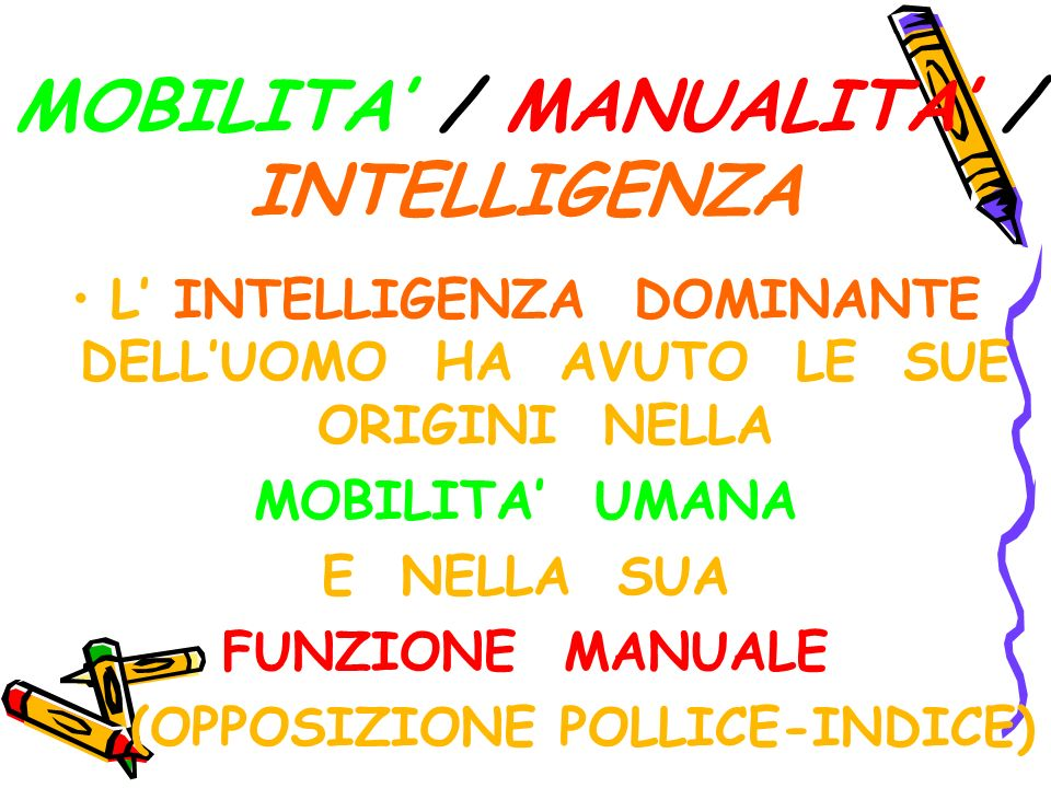 MOBILITA' / MANUALITA' / INTELLIGENZA