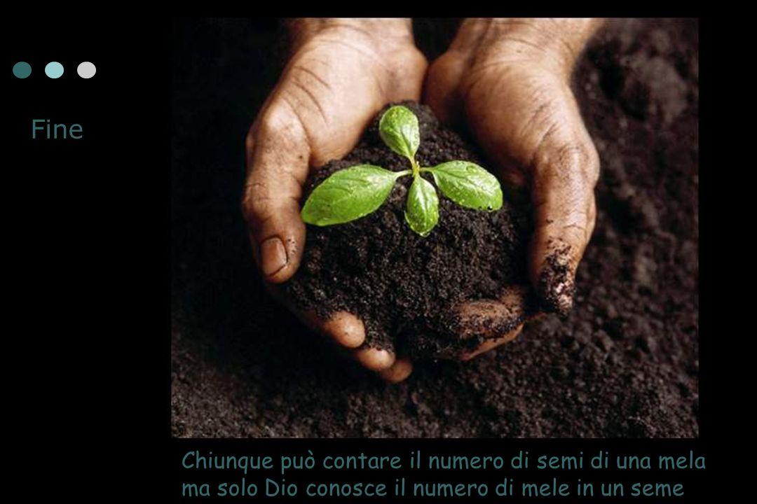 Fine Chiunque può contare il numero di semi di una mela ma solo Dio conosce il numero di mele in un seme.