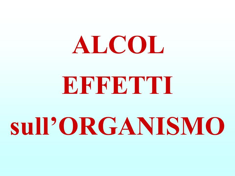 ALCOL EFFETTI sull'ORGANISMO