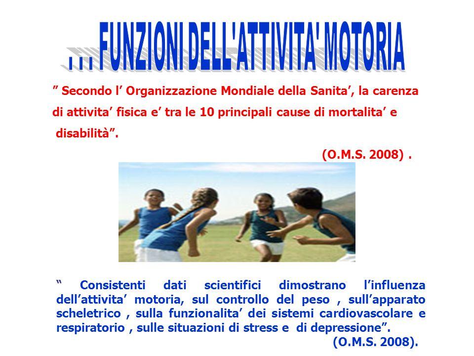 . . . FUNZIONI DELL ATTIVITA MOTORIA