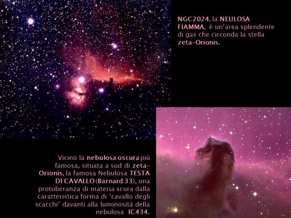 NGC2024, la NEULOSA FIAMMA, è un'area splendente di gas che circonda la stella zeta-Orionis.