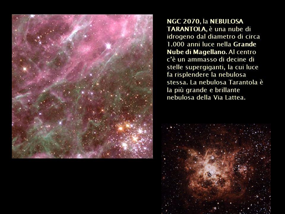 NGC 2070, la NEBULOSA TARANTOLA, è una nube di idrogeno dal diametro di circa 1.000 anni luce nella Grande Nube di Magellano.