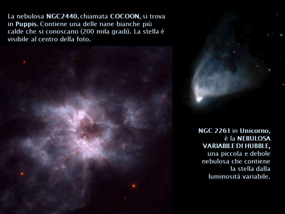 La nebulosa NGC2440, chiamata COCOON, si trova in Puppis