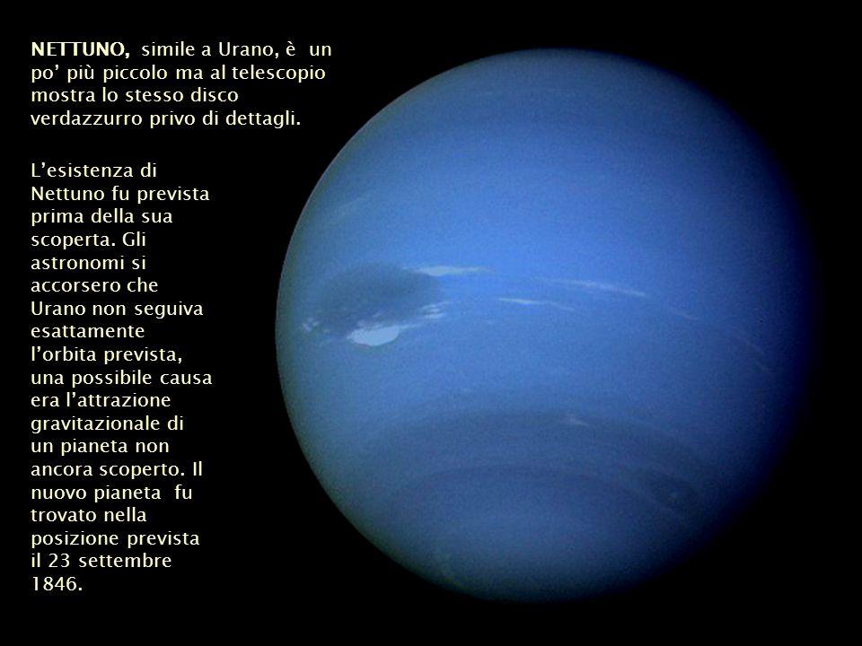 NETTUNO, simile a Urano, è un po' più piccolo ma al telescopio mostra lo stesso disco verdazzurro privo di dettagli.
