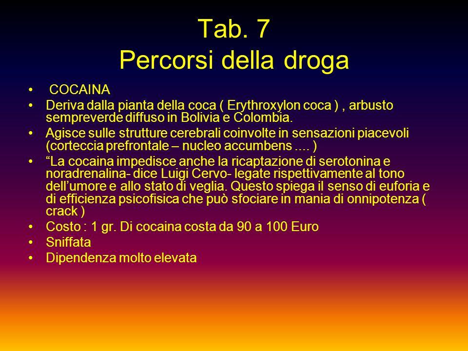 Tab. 7 Percorsi della droga