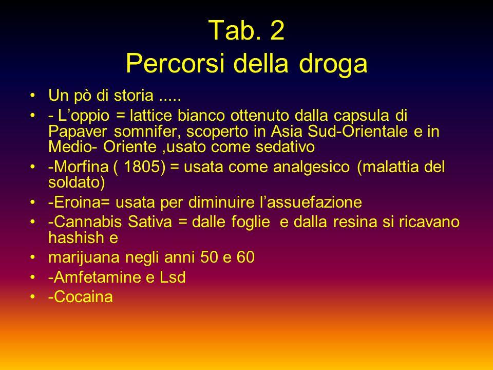 Tab. 2 Percorsi della droga