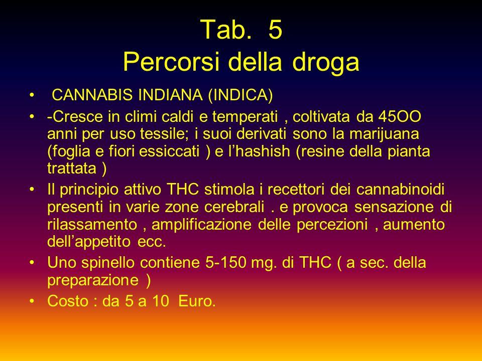 Tab. 5 Percorsi della droga