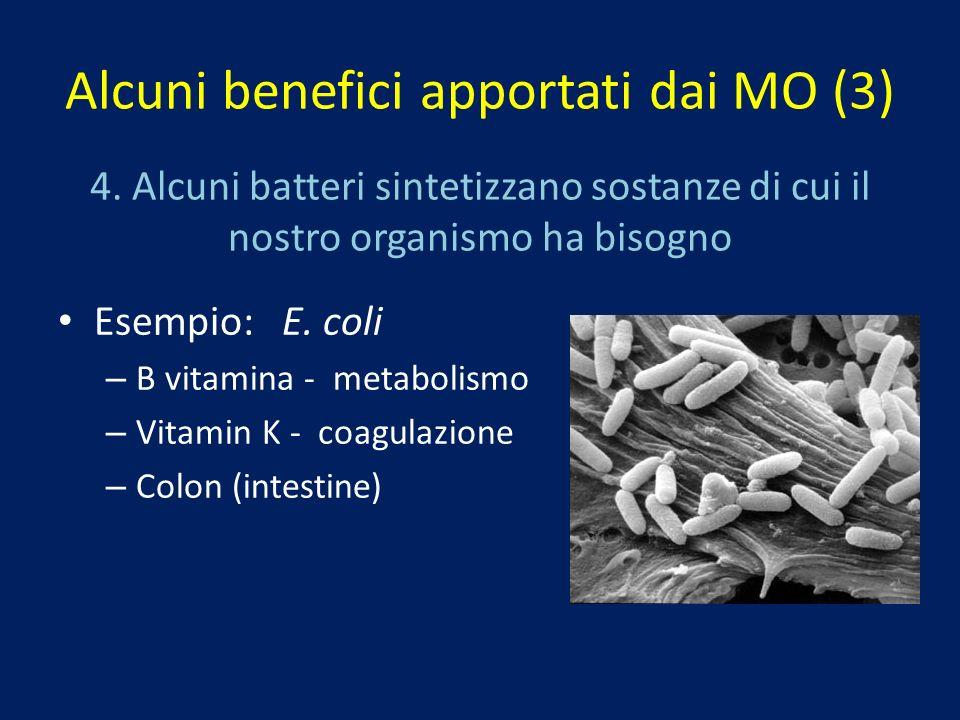 Alcuni benefici apportati dai MO (3)