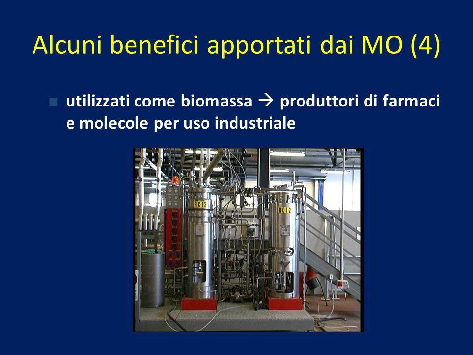 Alcuni benefici apportati dai MO (4)