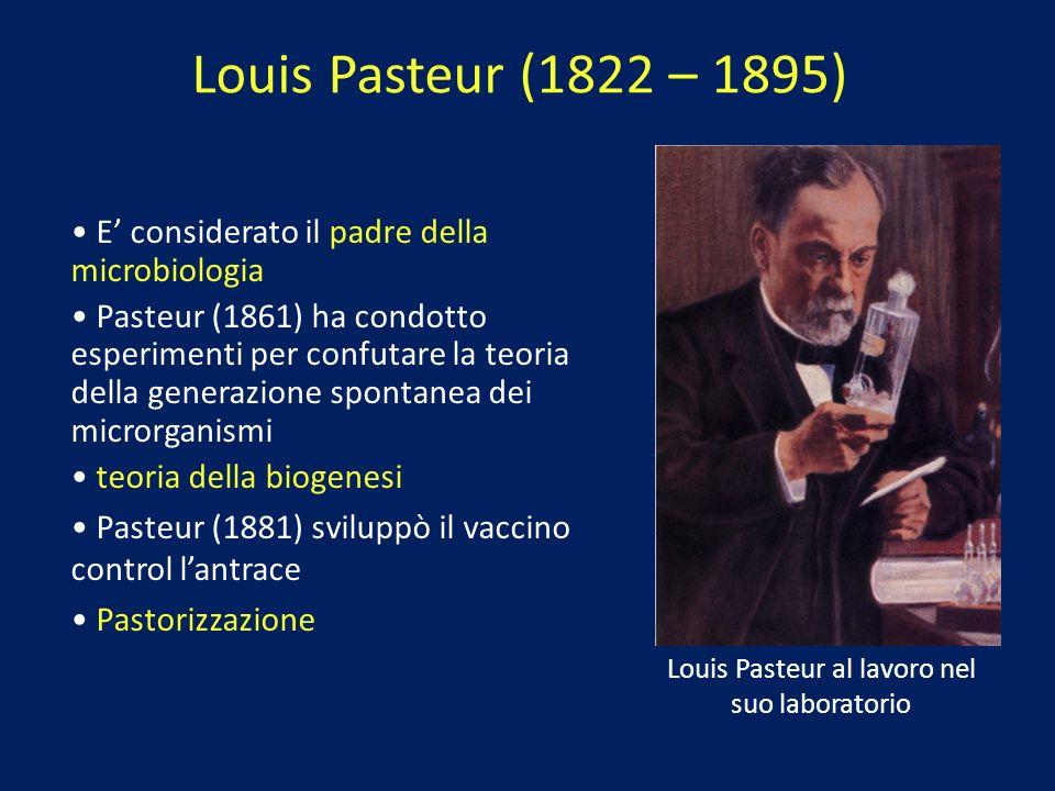 Louis Pasteur al lavoro nel suo laboratorio