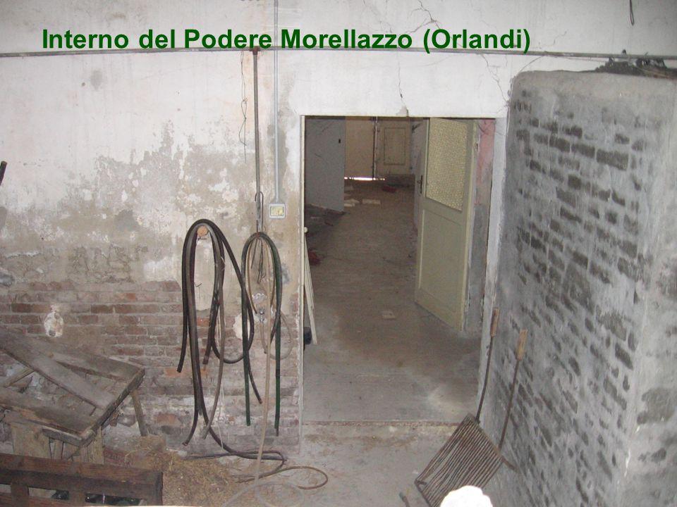 Interno del Podere Morellazzo (Orlandi)