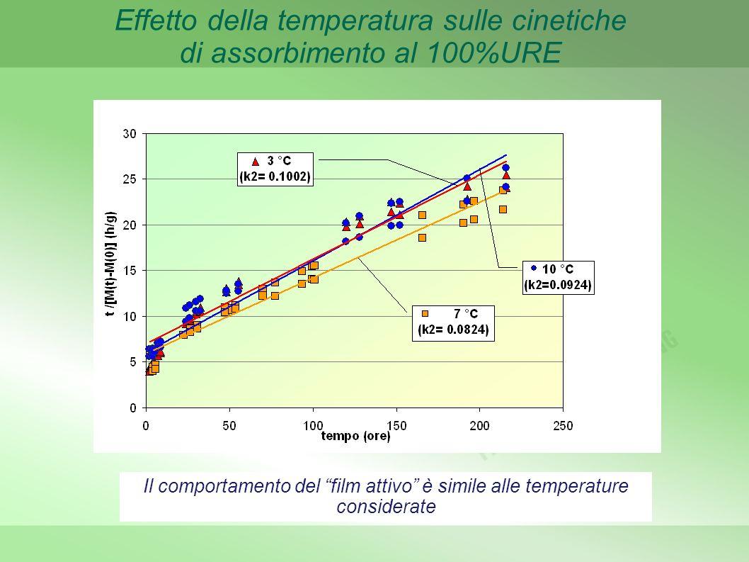 Effetto della temperatura sulle cinetiche di assorbimento al 100%URE
