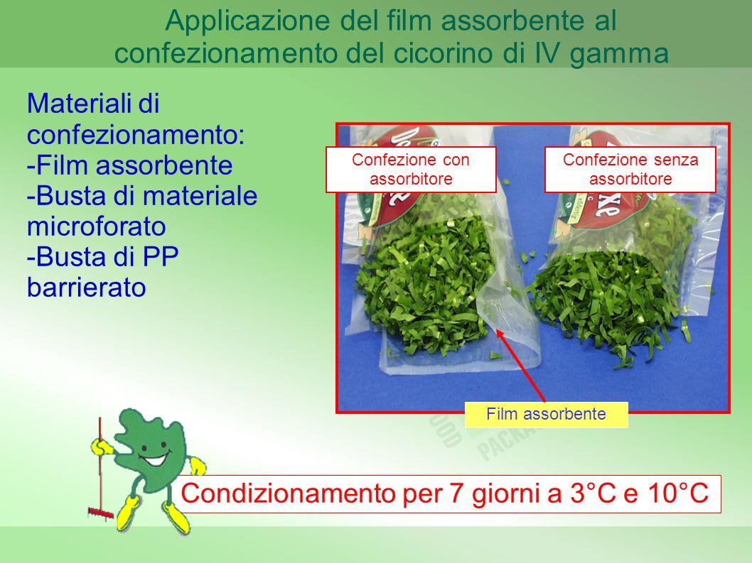 Applicazione del film assorbente al confezionamento del cicorino di IV gamma