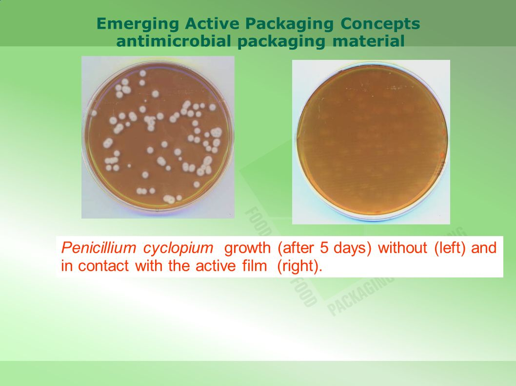 Emerging Active Packaging Concepts antimicrobial packaging material