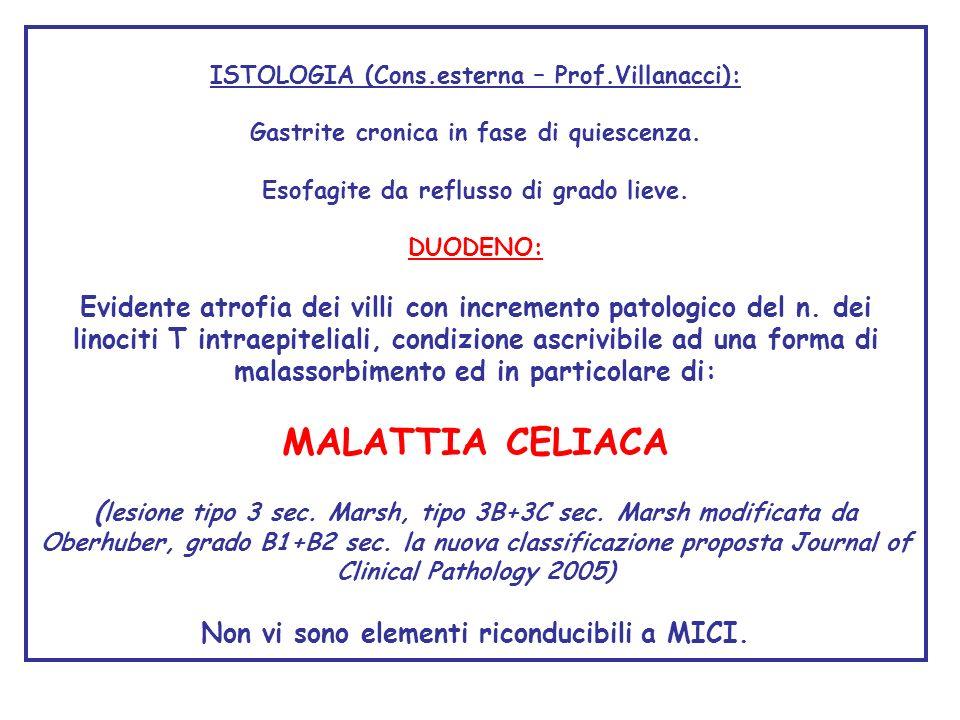 ISTOLOGIA (Cons.esterna – Prof.Villanacci):