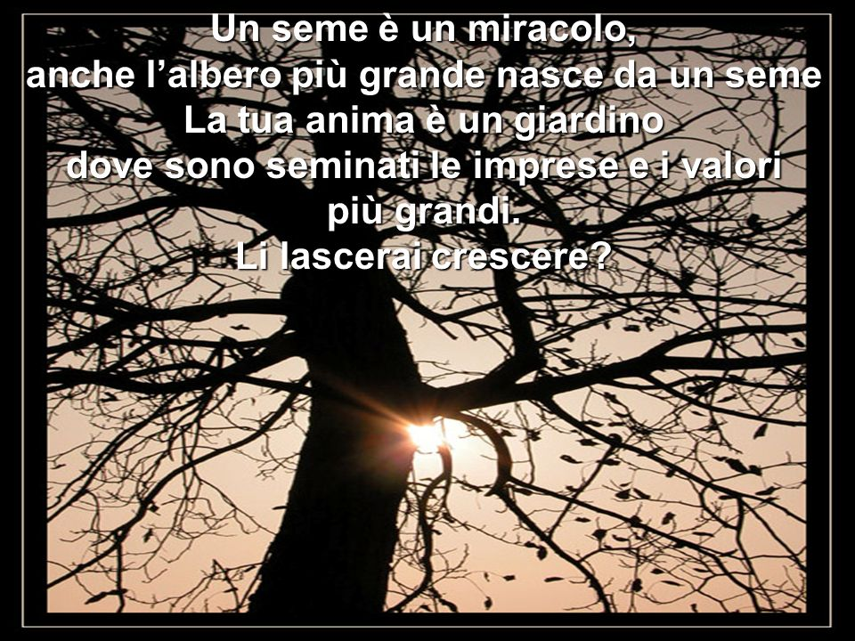 anche l'albero più grande nasce da un seme La tua anima è un giardino
