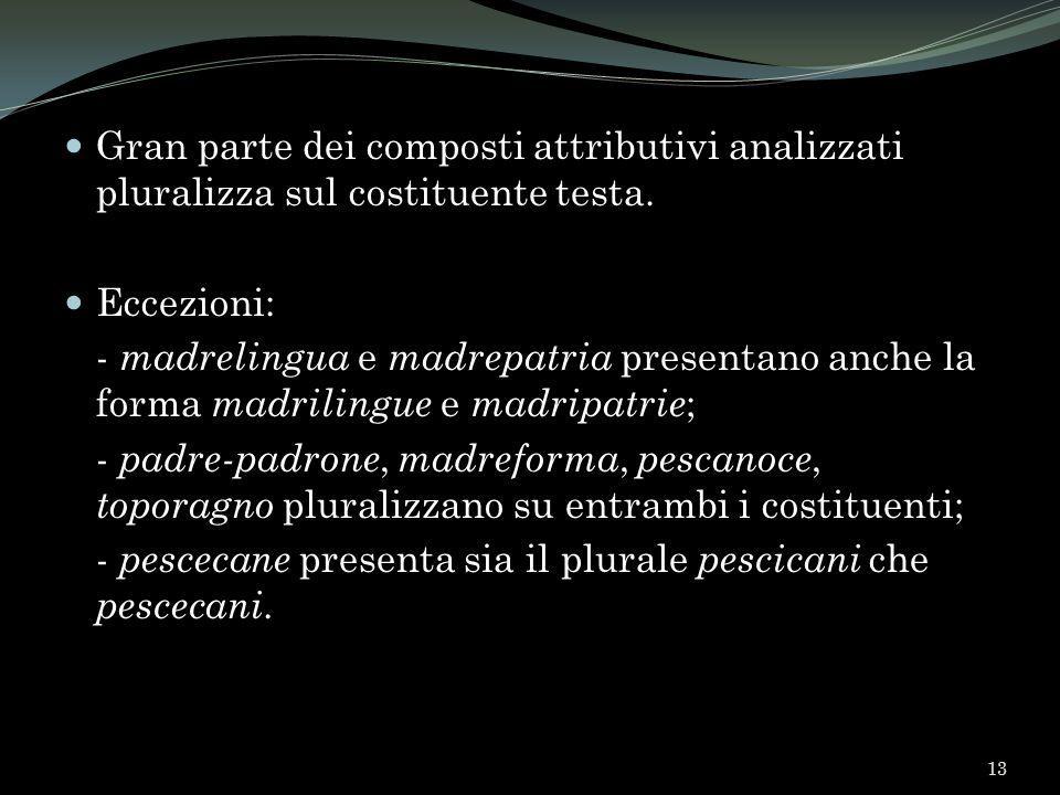 Gran parte dei composti attributivi analizzati pluralizza sul costituente testa.