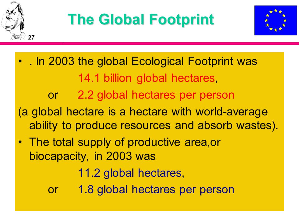 The Global Footprint . In 2003 the global Ecological Footprint was