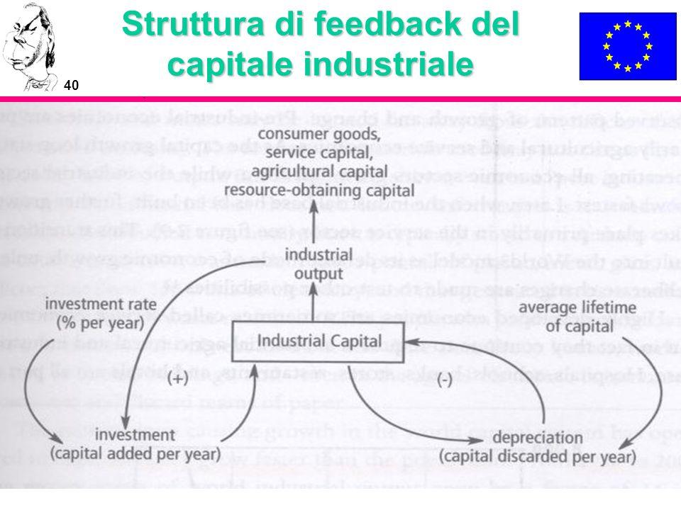 Struttura di feedback del capitale industriale