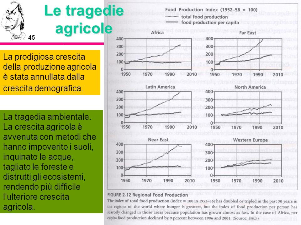 Le tragedie agricole La prodigiosa crescita della produzione agricola è stata annullata dalla crescita demografica.