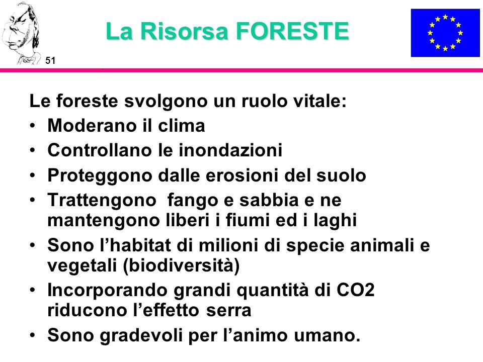 La Risorsa FORESTE Le foreste svolgono un ruolo vitale: