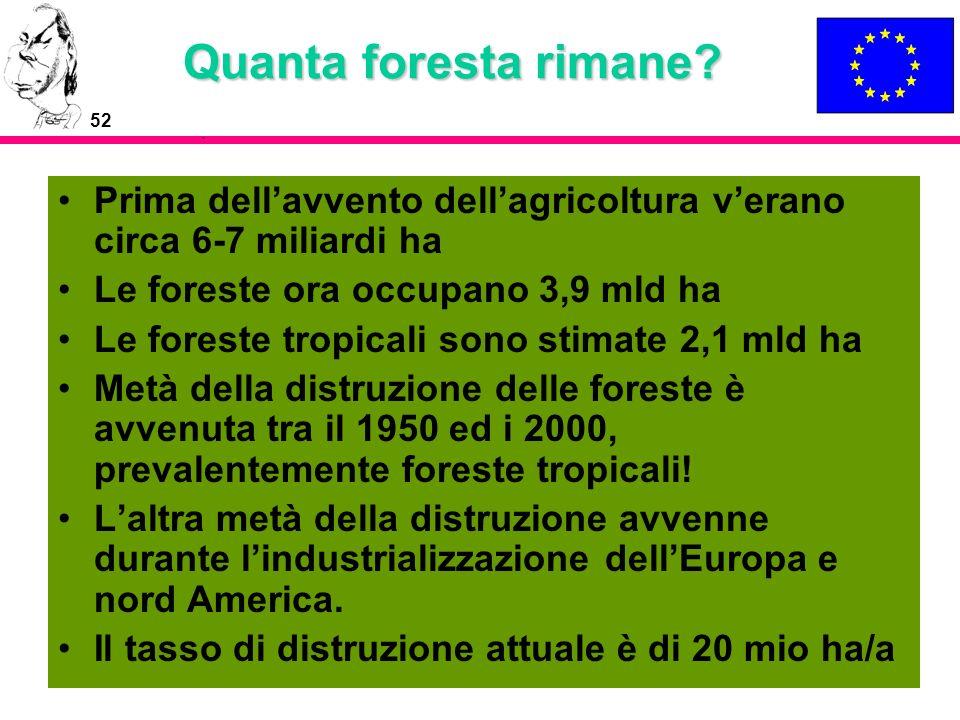 Quanta foresta rimane Prima dell'avvento dell'agricoltura v'erano circa 6-7 miliardi ha. Le foreste ora occupano 3,9 mld ha.