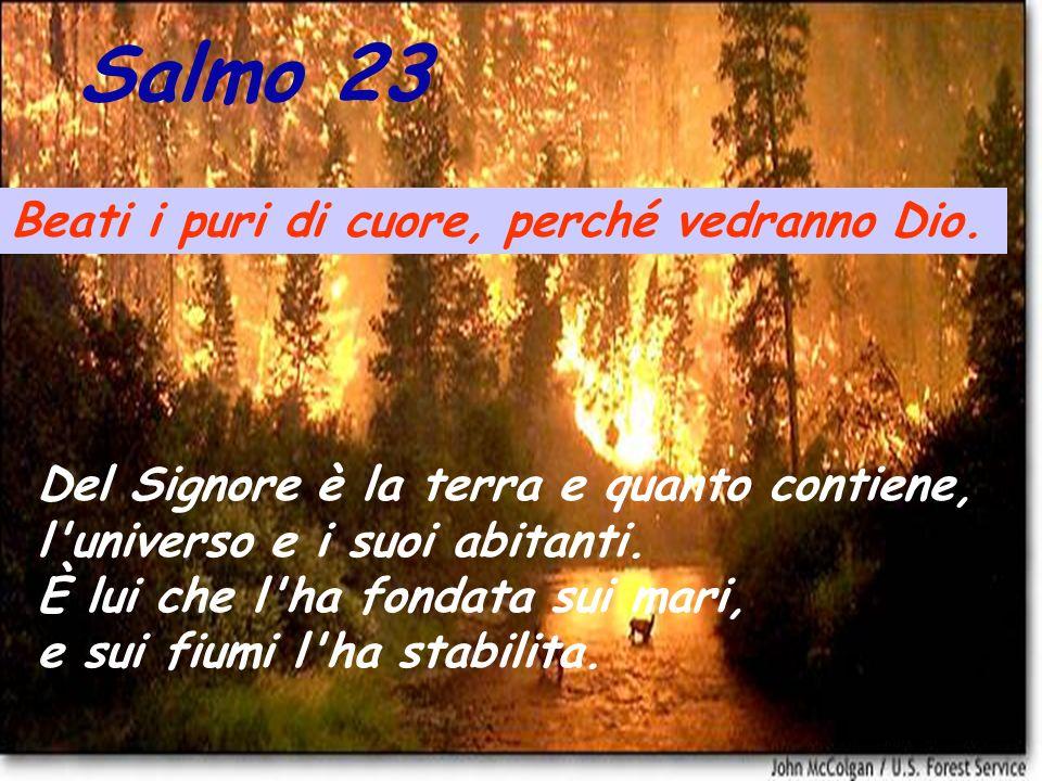 Salmo 23 Beati i puri di cuore, perché vedranno Dio.