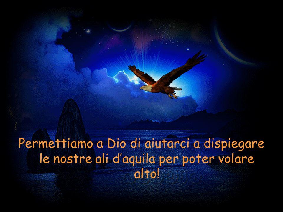 Permettiamo a Dio di aiutarci a dispiegare le nostre ali d'aquila per poter volare alto!