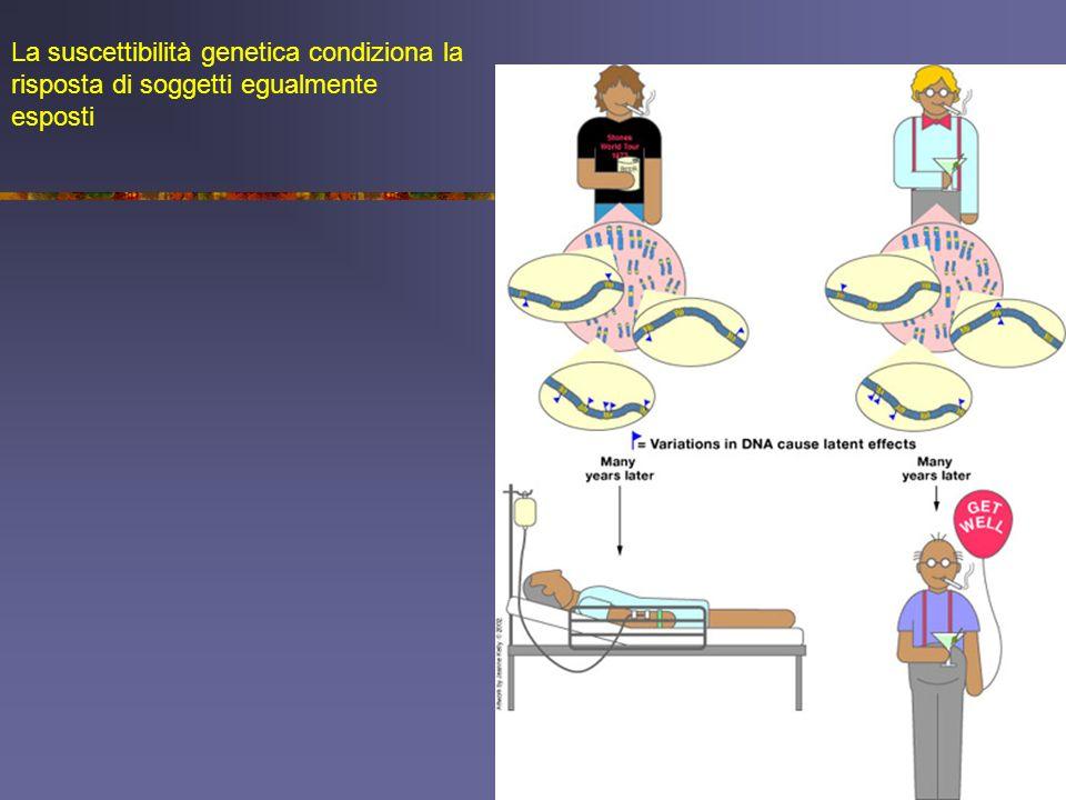 La suscettibilità genetica condiziona la risposta di soggetti egualmente esposti