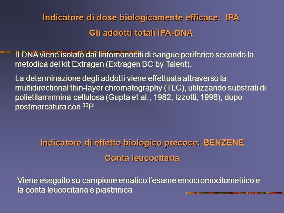 Indicatore di dose biologicamente efficace: IPA