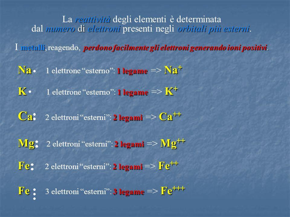 Ca 2 elettroni esterni : 2 legami => Ca++