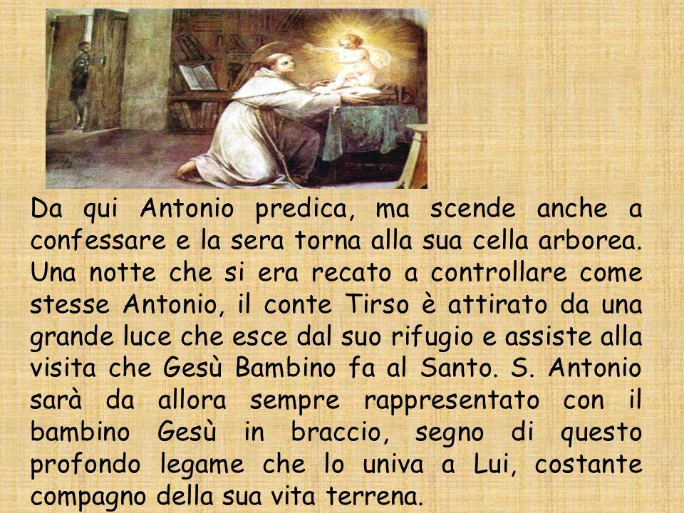 Da qui Antonio predica, ma scende anche a confessare e la sera torna alla sua cella arborea.
