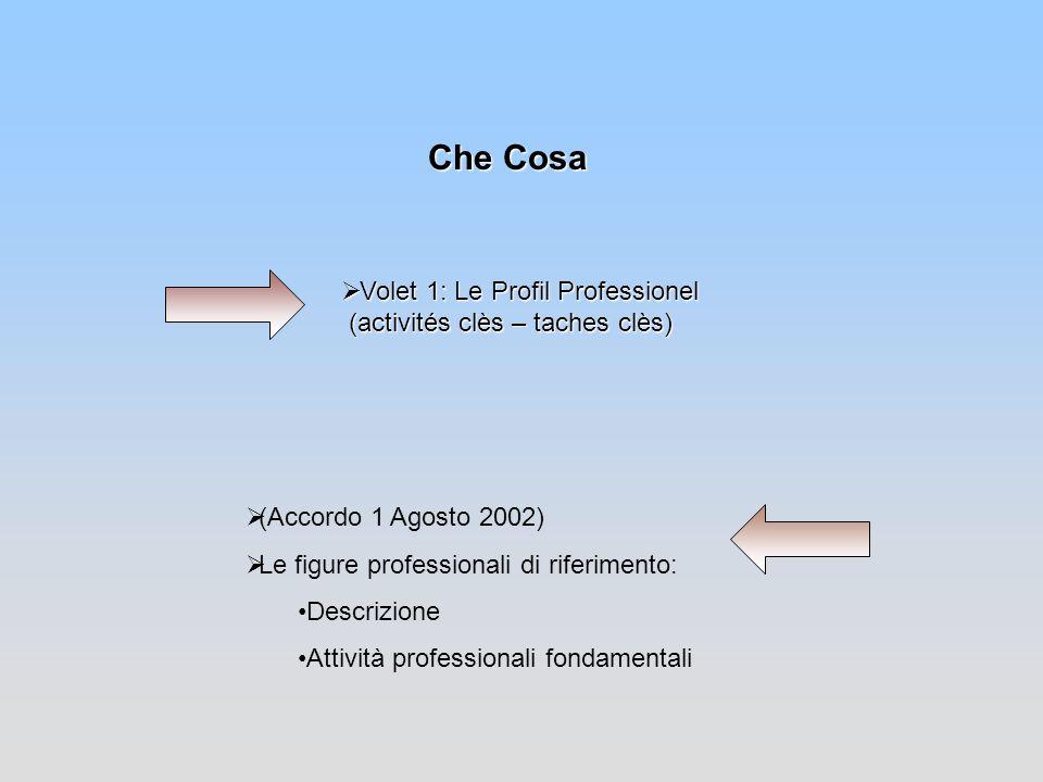 Che Cosa (Accordo 1 Agosto 2002) Le figure professionali di riferimento: Descrizione. Attività professionali fondamentali.