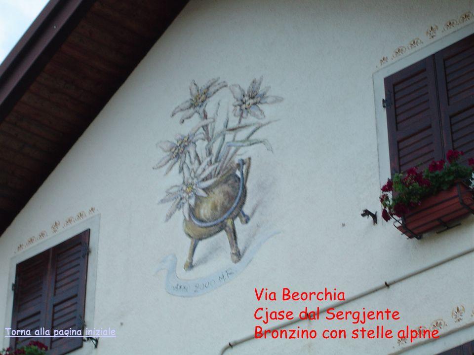 Via Beorchia Cjase dal Sergjente Bronzino con stelle alpine