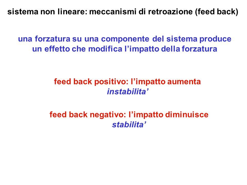 sistema non lineare: meccanismi di retroazione (feed back)