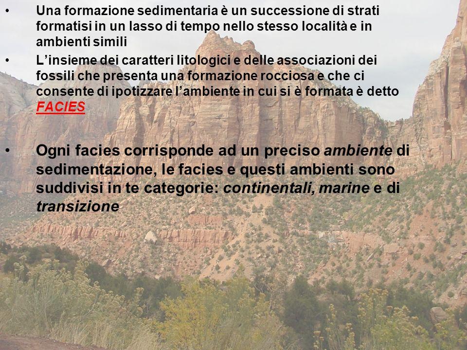 Una formazione sedimentaria è un successione di strati formatisi in un lasso di tempo nello stesso località e in ambienti simili